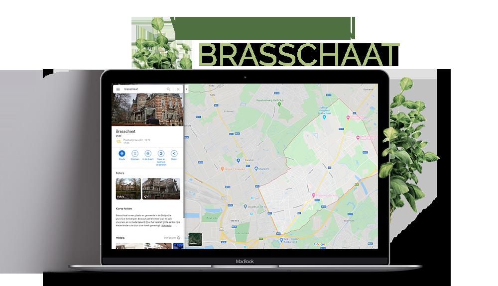 webdesign brasschaat